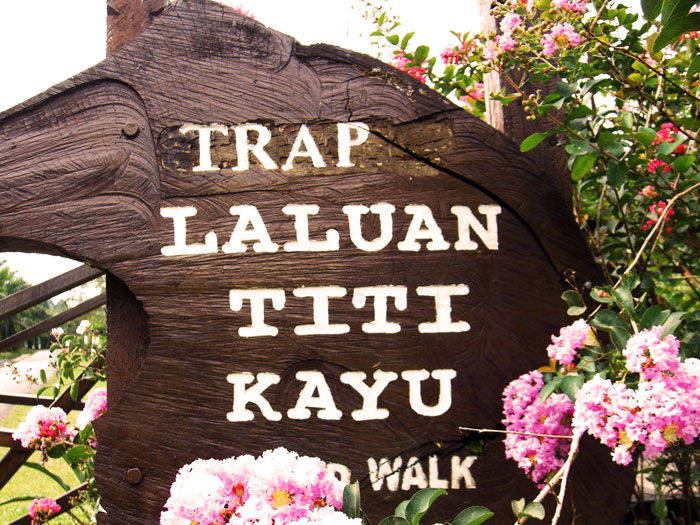 Trap Sungkai Board Walk