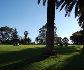 Perth Kings Park