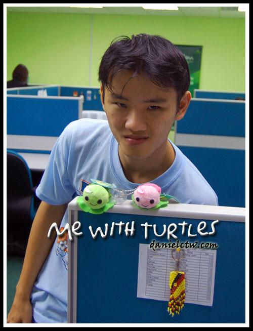 DanielCtw Turtle Cute