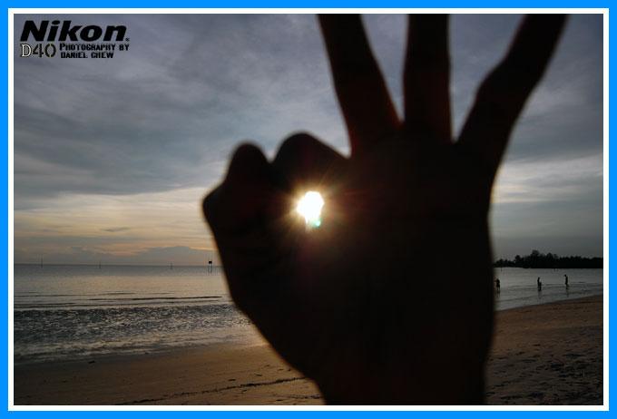 Bunny Hand Sunlight