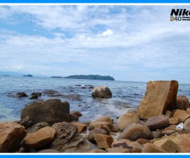 Pulau Sapi Rocks