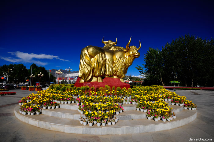 Golden Yak Statue