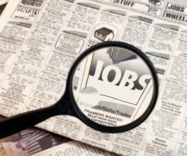 job search newspaper