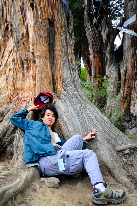 DanielCtw Exhausted at Giant Cypress Tree