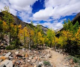 Trail to the Midui Glacier