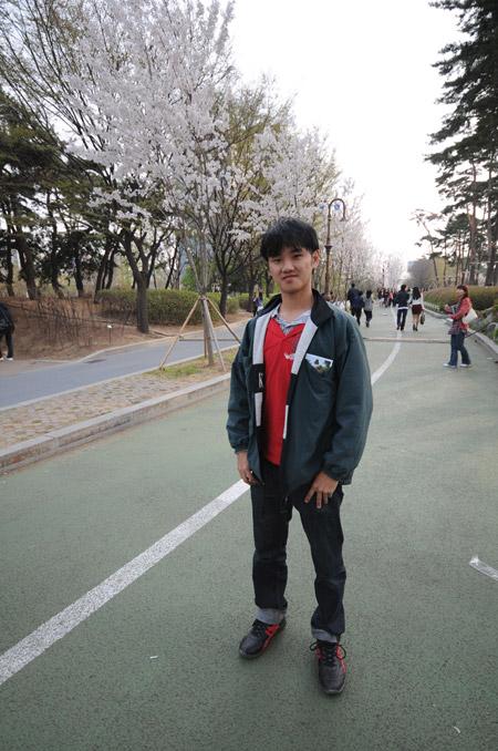 DanielCtw in Yeouido Cherry Blossom Road
