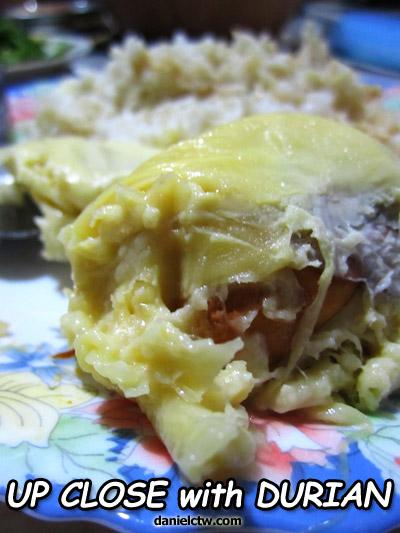 Durian Up Close