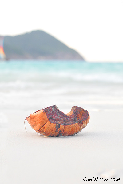 the lonely coconut shell