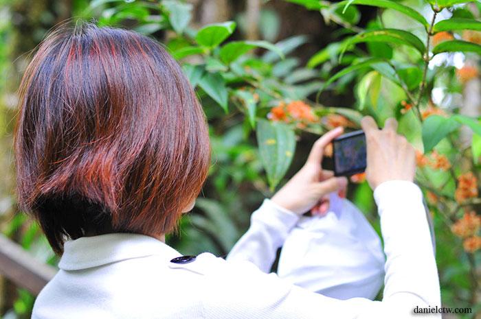 girl taking photo of flower