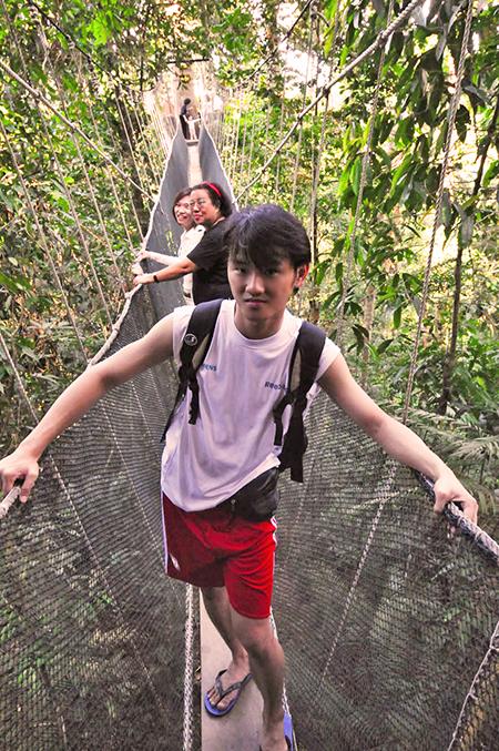 daniel chew kinabalu park suspension bridge