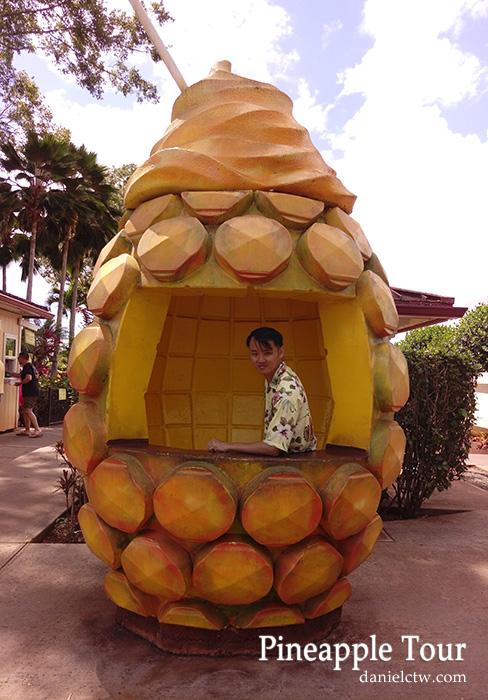 pineapple tour hawaii