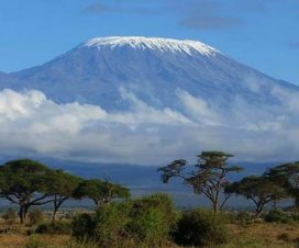 further mount kilimanjaro